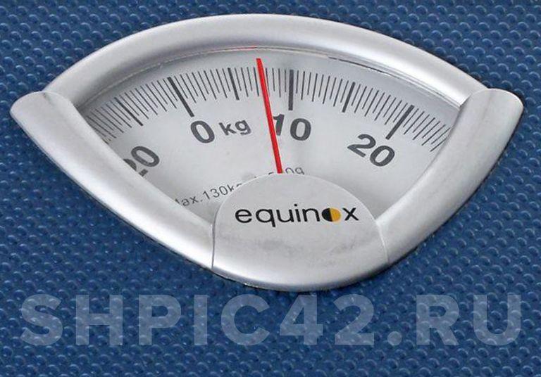 Таблица веса щенков шпица